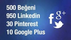 Sitenize 4 sosyal ağdan 1500 adet sosyal sinyal yaparım.